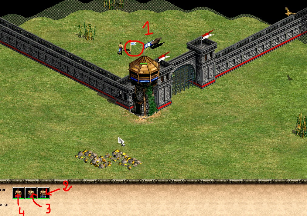 executing tower hop age of empires 2