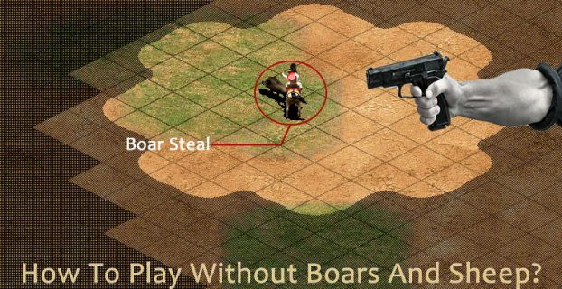 How To Play Without Boars And Sheep