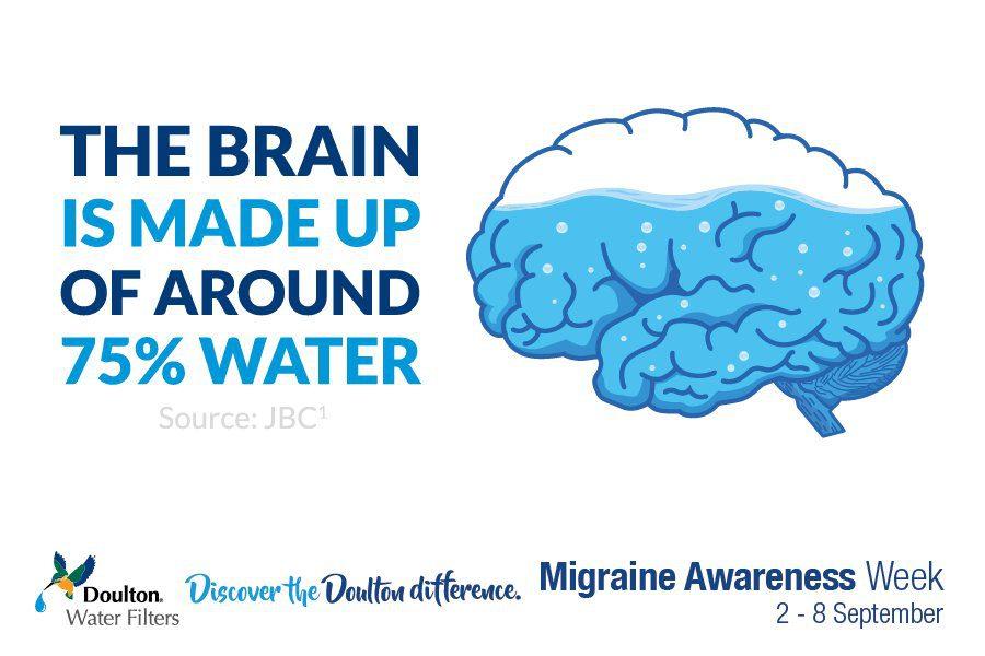 brain is 75 percent water